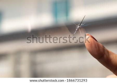 Broken windshield of a car. A web of radial splits, cracks on the triplex windshield. Broken car windshield. Royalty-Free Stock Photo #1866731293