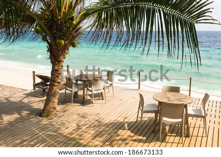 cafe with tables and chairs and sunbeds on the ocean under a palm tree #186673133