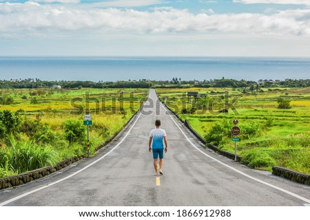 Landscape View Of Diamond Avenue (King Kong Avenue, King Kong Tadao Bike Trails) And Paddy By The Road Next To The Coast Of Pacific Ocean, Taitung, Taiwan Royalty-Free Stock Photo #1866912988