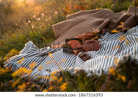 Traditional Japanese teapot on boho picnic blanket in park. Sunset golden picture of evening summer snacks in grass. Relaxing, hygge, calming concept. Picnic in nature. Golden hour nature color.