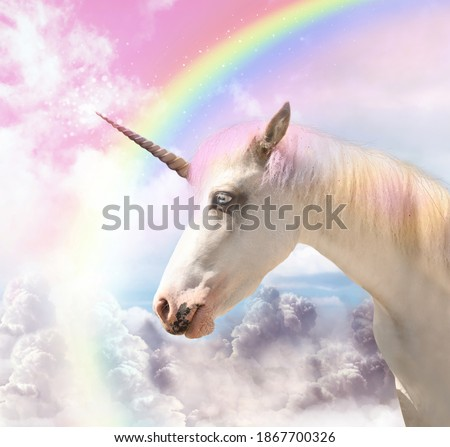 Magic unicorn in beautiful sky with rainbow and fluffy clouds. Fantasy world Royalty-Free Stock Photo #1867700326