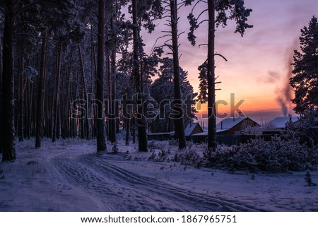 Winter rural road in frosty pine forest at twilight, dusk leading to village houses with smoking chimney  among trees in frost at bright  sunset in Russia, Siberia. Siberian landscape. Russian nature