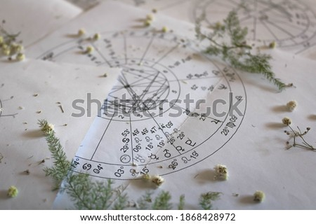 Printed astrology natal charts with small yellow flowers and fragile green plant branches, annual and New Year horoscope background Royalty-Free Stock Photo #1868428972