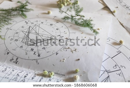 Printed astrology natal charts with small yellow flowers and fragile green plant branches, annual and New Year horoscope background Royalty-Free Stock Photo #1868606068