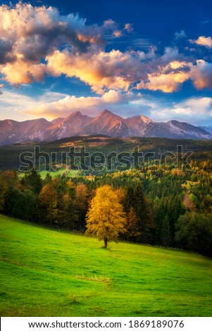 A beautiful autumn evening on a pasture under rocky mountains with a wild forest, a beautiful yellow tree in the middle of a meadow and a colorful dramatic sky. High tatras NP, Poland, Slovakia Royalty-Free Stock Photo #1869189076
