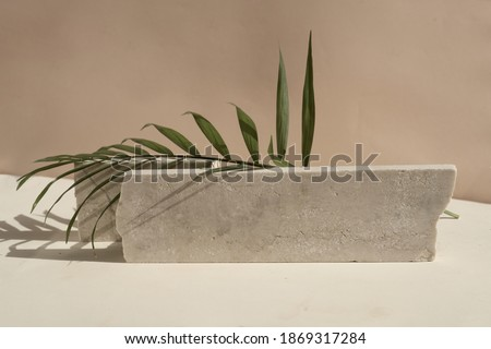 Minimal modern product display on neutral beige background with podium with palm leaves, toned Royalty-Free Stock Photo #1869317284