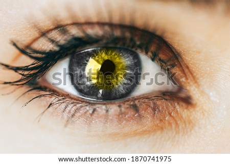 close up gray Eye with yellow Illuminating in centre, concept photo of year color, 2021.