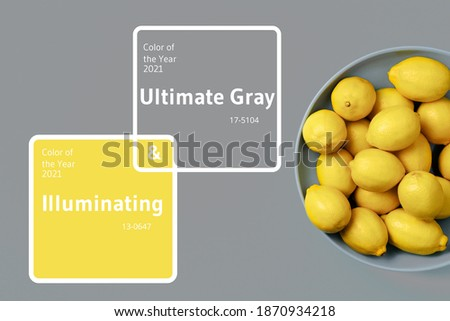 Lemon fruits on plate over gray background. Top view. Copy space. Citrus fruits. Demonstrating trendy Color of the Year 2021. Illuminating Yellow and Ultimate Gray.