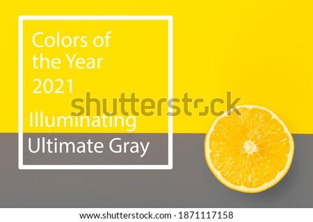 Colors of the year 2021 Ultimate Gray and Illuminating background. Yellow illuminating Lemon on ultimate gray background.