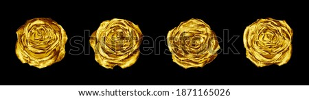 Golden rose flowers set black background isolated close up, four gold roses, shiny yellow metal flower heads, decorative design element, floral pattern, beautiful vintage decoration, retro style decor Royalty-Free Stock Photo #1871165026