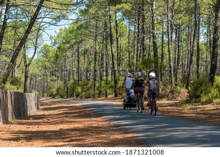 Arcachon Bay, France. Bike path in the Gascony forest near the dune of Pilat in La Teste Royalty-Free Stock Photo #1871321008