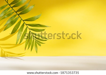 Minimal modern product display on textured gray and yellow background with fresh palm leaves and shadows Royalty-Free Stock Photo #1871353735