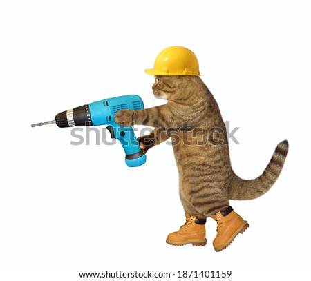 A cat worker in a yellow construction is holding a blue hand electric drill. White background. Isolated.