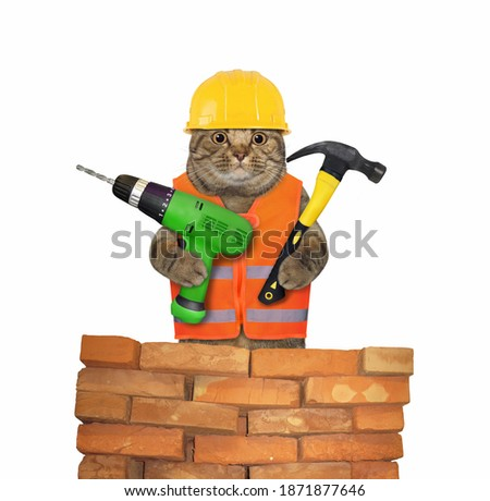 A cat worker in a yellow construction is holding a hand electric drill and a hammer at a brick wall. White background. Isolated.