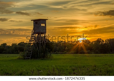 a high seat on a green meadow in the evening sun Royalty-Free Stock Photo #1872476335