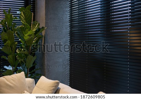 A houseplant is near black wood blinds. Closeup on the window in the interior. Coulisse wooden slats 50mm wide. Venetian blinds closed in the living room. Sand color sofa is near the window. Royalty-Free Stock Photo #1872609805