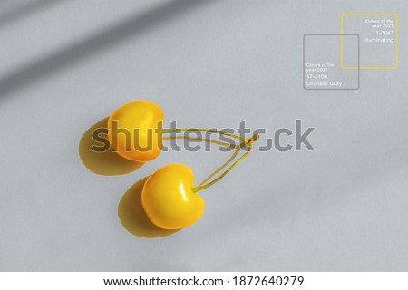 Yellow cherry on a gray background. Representation of the color of the year 2021 ultimate gray and illuminating color. A top view of a flat layout. The concept of sunny mood, summer. Fruit minimalism.