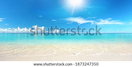 Beautiful sandy beach with white sand and rolling calm wave of turquoise ocean on Sunny day on background white clouds in blue sky. Island in Maldives, colorful perfect panoramic natural landscape. Royalty-Free Stock Photo #1873247350