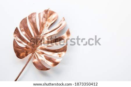Tropical leaves in gold color on white space background.Abstract monstera leaf decoration design Royalty-Free Stock Photo #1873350412