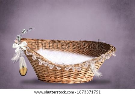 digital backdrop newborn photoshoot basket