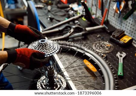 Bicycle repair in workshop, man installs cassette Royalty-Free Stock Photo #1873396006