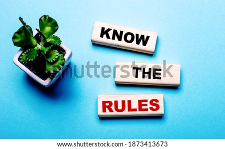 KNOW THE RULES is written on wooden blocks on a light blue background near a flower in a pot Royalty-Free Stock Photo #1873413673