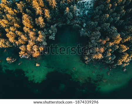 Colored autumn trees from a bird's eye view, from above, drone image, forest from above at a lake in the Alps, sunrise, Hintersee, Germany Royalty-Free Stock Photo #1874339296