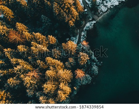 Colored autumn trees from a bird's eye view, from above, drone image, forest from above at a lake in the Alps, sunrise, Hintersee, Germany Royalty-Free Stock Photo #1874339854