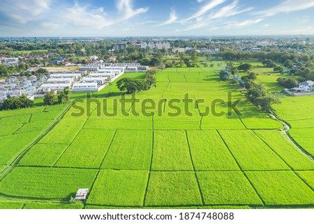 Cultivated land and land plot or land lot. Consist of aerial view of green field, agricultural plant and ridge. That is tract of land for cultivate, owned, sale, development, rent, buy or investment. Royalty-Free Stock Photo #1874748088