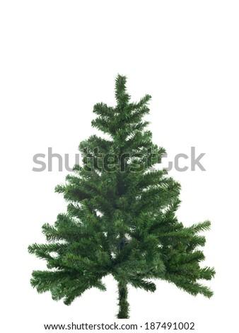 A christmas fir tree shot in studio #187491002
