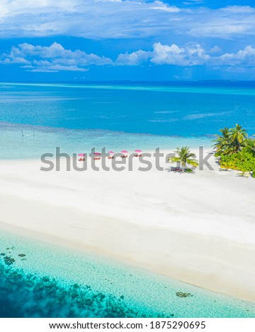 Aerial photo of beautiful Maldives paradise tropical beach. Amazing view, blue turquoise lagoon water, palm trees and white sandy beach. Luxury travel vacation destination. Sunny aerial landscape  Royalty-Free Stock Photo #1875290695