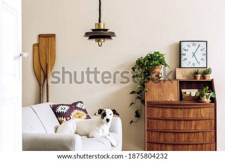 Stylish retro composition of living room interior with vintage wooden cabinet, plants, clock, paddle, pendant lamp and elegant accessories. Beautiful dog lying on the sofa. Retro home decor.