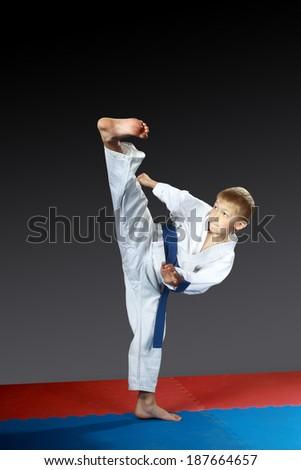 On the red-blue mat small athlete beat kick yoko-geri  #187664657