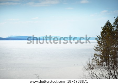 Young pine trees and a frozen lake after a blizzard on a clear day. Mountain peaks in the background. Idyllic winter landscape. Ecology, environment, climate change. Kola Peninsula, Karelia, Russia
