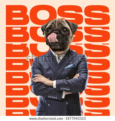 Boss headed by dog head standing with hands crossed. Copyspace to insert your text. Modern design. Contemporary art. Creative conceptual and colorful collage. Office worker lifestyle concept. Royalty-Free Stock Photo #1877042323