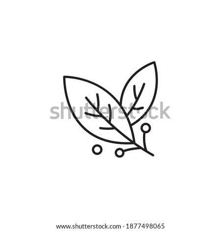 Bay leaf simple thin line icon vector illustration Royalty-Free Stock Photo #1877498065