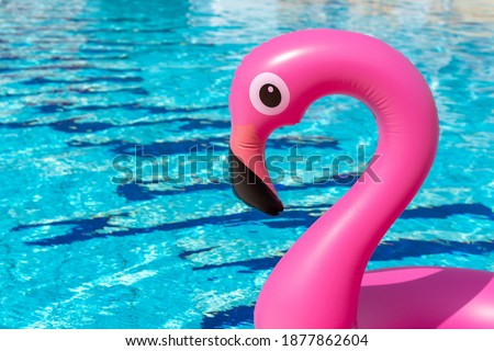 Summer sale. Pink inflatable flamingo in pool water for summer beach background. Minimal summer concept.