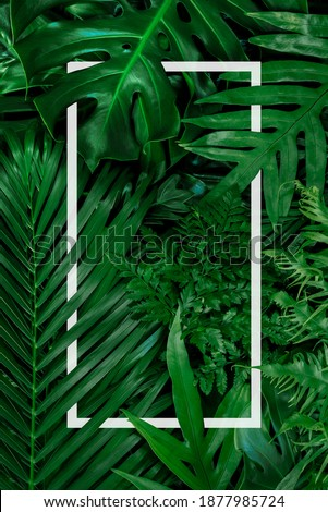 Square frame, Creative layout made of tropical flowers and leaves with paper card note. Flat lay. Blank for advertising card or invitation. Flat lay. Nature concept. Royalty-Free Stock Photo #1877985724