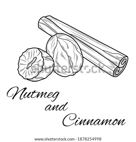 Nutmeg and cinnamon.Coloring. Illustration isolated on white background.Zen-tangle style. Royalty-Free Stock Photo #1878254998