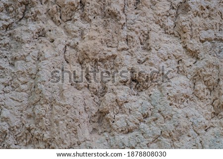 Background picture of the soil that termites have created.