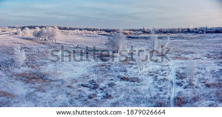 Aerial panoramic drone view on snow covered winter field with birch trees in frost. Cold sunny december day in wild nature park, Samara, Russia Royalty-Free Stock Photo #1879026664