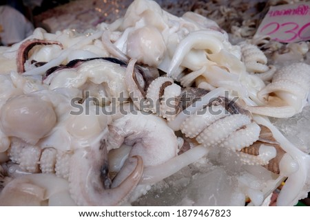 """Fresh squid at fresh market in thailand and there are thai language in the picture meaning in english is """"squid tantacles price"""" for selling"""