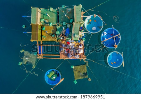 Aerial view of  shrimp ( prawn ) farm and lobster in front of Yen island, Phu Yen, Vietnam. Royalty-Free Stock Photo #1879669951