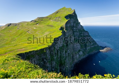 Hornbjarg cliffs in Hornstrandir nature reserve with blossoming flowers, Westfjords, north-east Iceland Royalty-Free Stock Photo #1879851772