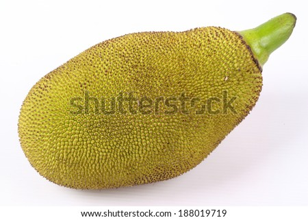 Jackfruit isolated on white background #188019719