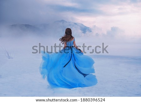 Mystery fantasy Woman Snow Queen in blue lush dress, fly in wind. Lady traveler. Art background winter frozen nature mountains, snow white dramatic sky clouds heaven. Girl princess walks, back view. Royalty-Free Stock Photo #1880396524