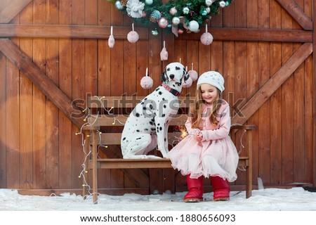 animal, animals, background, basket, beautiful, blonde, celebration, charming, child, christmas, cute, dalmatian dog, dalmatian puppy, decor, decorated, decoration, dog, dress, fashion, fun, gift, gir