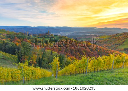Autumn landscape with South Styria vineyards, known as Austrian Tuscany, a charming region on the border between Austria and Slovenia with rolling hills, picturesque villages and wine taverns Royalty-Free Stock Photo #1881020233