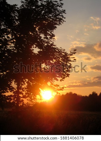 macro photo with decorative background of an evening rural landscape in a European country in Germany for design as a source for prints, posters, decor, interiors, Wallpaper
