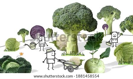 Hand drawn - Cartoon Gardeners working in a Fantasy Cabbages Garden - Collage
